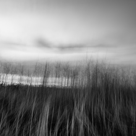 (CreativeWork) Hazy lazy days Ed. 1 of 5 by Wendy Philip. Photograph. Shop online at Bluethumb.