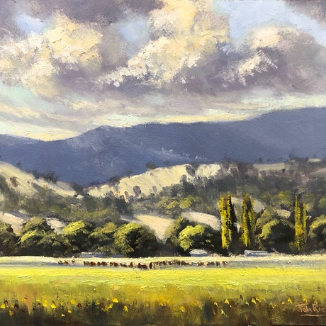 (CreativeWork) Stormy Skies, Tumut by John Rice. Oil Paint. Shop online at Bluethumb.