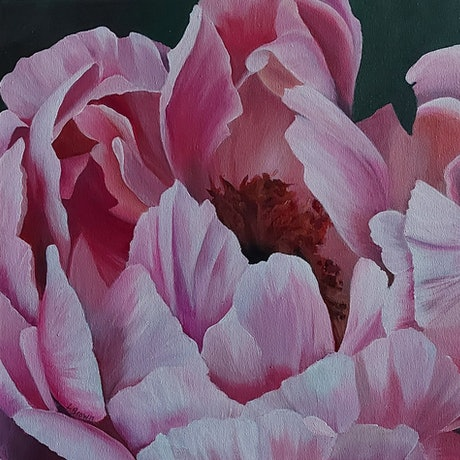 (CreativeWork) LA PIVOINE by Lynette Brown. Acrylic Paint. Shop online at Bluethumb.