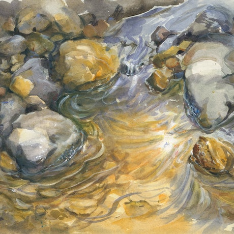 (CreativeWork) Ebb  and Flow by Anica Amphlett. Watercolour Paint. Shop online at Bluethumb.
