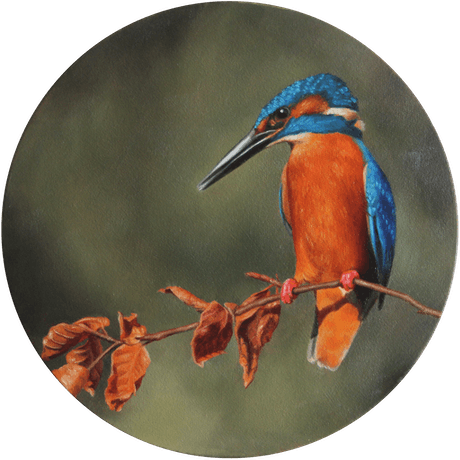 (CreativeWork) Kingfisher by Casey Thornton. Oil Paint. Shop online at Bluethumb.