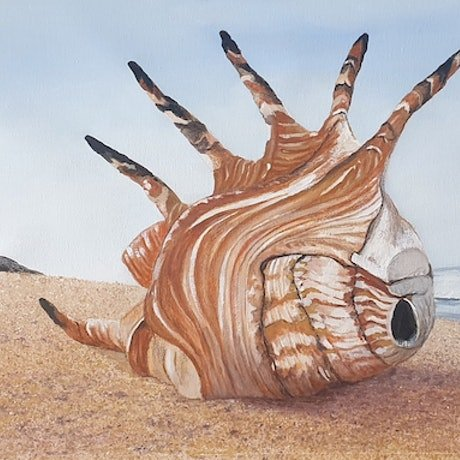(CreativeWork) Spider Shell on the Beach by Harry Lea. Watercolour Paint. Shop online at Bluethumb.