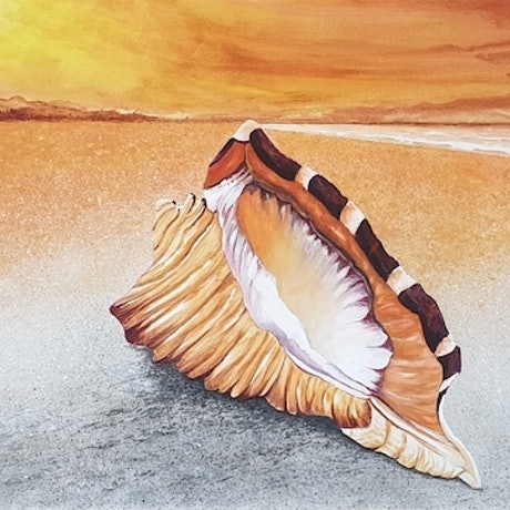 (CreativeWork) Conch Shell at Sunset by Harry Lea. Watercolour Paint. Shop online at Bluethumb.