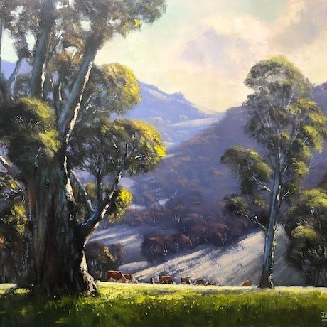 (CreativeWork) Morning In The Hills, Tumut by John Rice. Oil Paint. Shop online at Bluethumb.