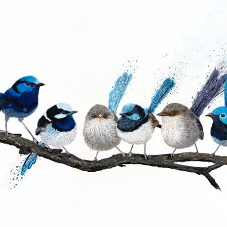(CreativeWork) Birds of a Feather - 6 wrens Ed. 10 of 100 by Johanna Larkin. Reproduction Print. Shop online at Bluethumb.