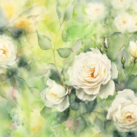 (CreativeWork) Dreamy White Roses by Cecilia Xiao. Watercolour Paint. Shop online at Bluethumb.