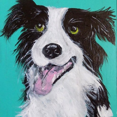 (CreativeWork) Border Collie - Who ? Me?  by Ilanit Vanu. Acrylic Paint. Shop online at Bluethumb.
