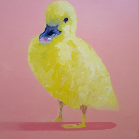 (CreativeWork) Quack  by John Graham. Oil Paint. Shop online at Bluethumb.