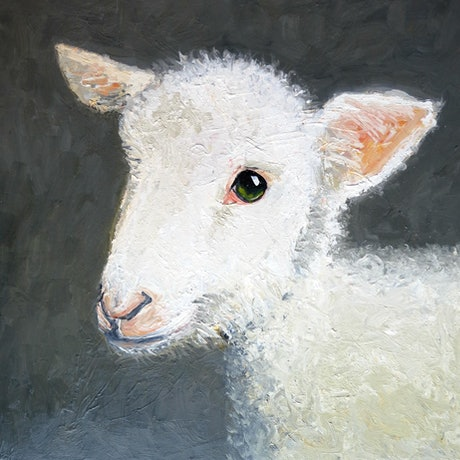 (CreativeWork) Baaaaaaaaaaa! - in oil paint on canvas  by John Graham. Oil Paint. Shop online at Bluethumb.