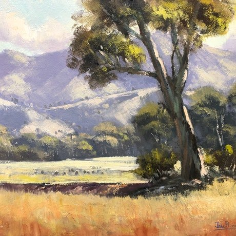 (CreativeWork) Light On The Hills, Mudgee by John Rice. Oil Paint. Shop online at Bluethumb.