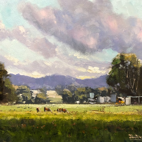(CreativeWork) Late afternoon Sunshine, Mudgee by John Rice. Oil Paint. Shop online at Bluethumb.