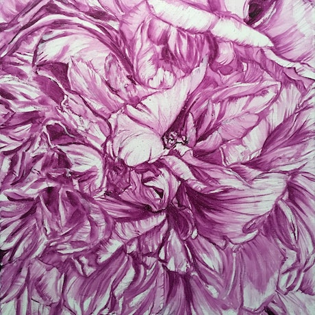 (CreativeWork) PEONY IN MAUVE - LIMITED EDITION GICLEE PRINT on Paper Ed. 1 of 100 by HSIN LIN. Print. Shop online at Bluethumb.