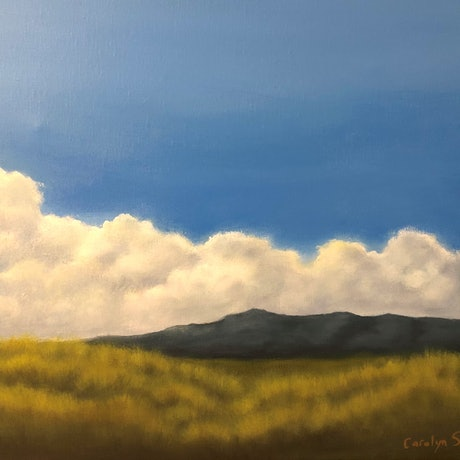 (CreativeWork) Summer by Carolyn Stephens. Acrylic Paint. Shop online at Bluethumb.