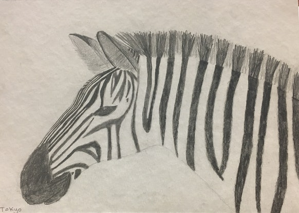 (CreativeWork) Zebra by Coco Tokyo. Drawings. Shop online at Bluethumb.