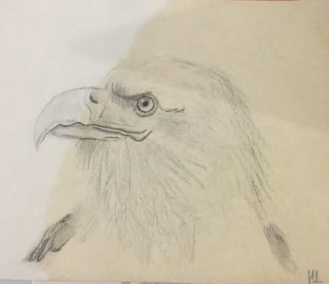 (CreativeWork) Eagle by Harriet Lionheart. Mixed Media. Shop online at Bluethumb.