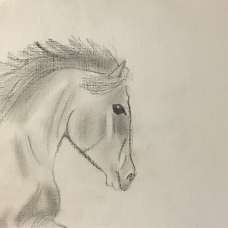 (CreativeWork) mustang by Harriet Lionheart. Drawings. Shop online at Bluethumb.