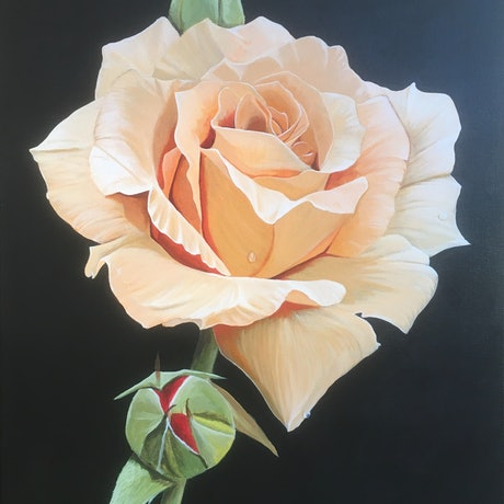 (CreativeWork) Endless Beauty by Stephen Thompson. Acrylic. Shop online at Bluethumb.