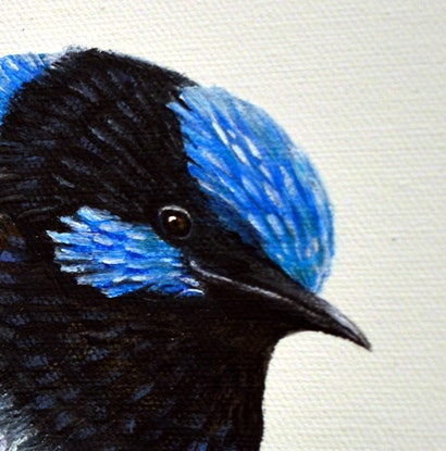 (CreativeWork) Fairy Wrens - Love at First Sight by Linda Callaghan. Acrylic Paint. Shop online at Bluethumb.