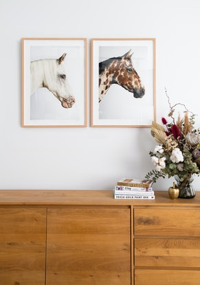 (CreativeWork) Spud Horse Ed. 2 of 20 by GRACE COSTA. Photograph. Shop online at Bluethumb.