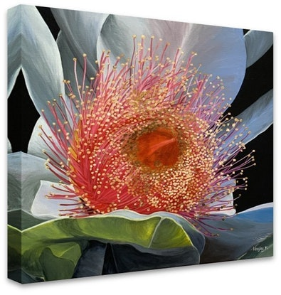 (CreativeWork) Coral Treasure - Canvas Print Ed. 11 of 100 by Hayley Kruger. Print. Shop online at Bluethumb.