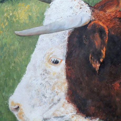 (CreativeWork) The Bull by Christine Richman. Oil Paint. Shop online at Bluethumb.