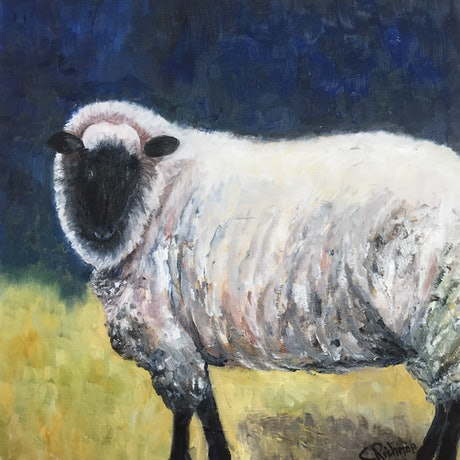 (CreativeWork) Curious Ram by Christine Richman. Oil Paint. Shop online at Bluethumb.