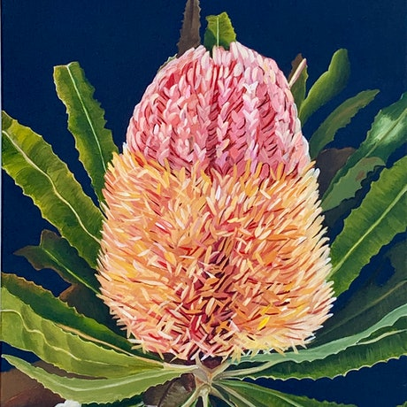 (CreativeWork) Beauty Rich and Rare Ed. 5 of 100 by Hayley Kruger. Print. Shop online at Bluethumb.