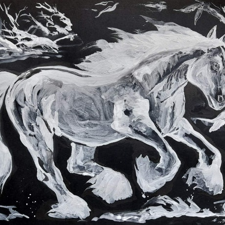 (CreativeWork) Gypsy Vanner through the woods  by Liz H Lovell. Drawings. Shop online at Bluethumb.