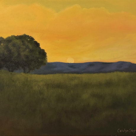 (CreativeWork) Sense of Place by Carolyn Stephens. Acrylic Paint. Shop online at Bluethumb.