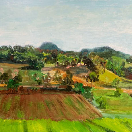 (CreativeWork) Afternoon Cane Fields by Dylan Cooper. Acrylic Paint. Shop online at Bluethumb.