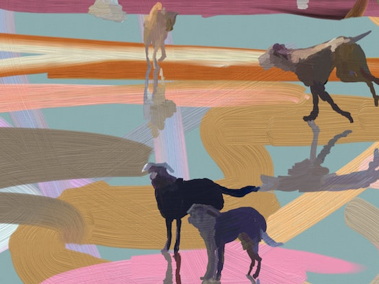 (CreativeWork) Heaven is a Dog Beach - Scribble Beach Series    Ed. 9 of 25 by Pip Phelps. Print. Shop online at Bluethumb.