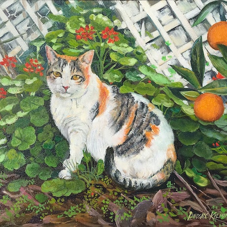 (CreativeWork) Garden cat by Lindsay Kilminster. Oil Paint. Shop online at Bluethumb.
