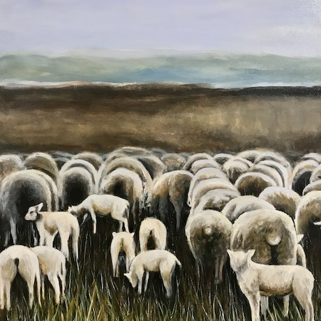 (CreativeWork) Lambs at play by LOUISE GROVE WIECHERS. Acrylic Paint. Shop online at Bluethumb.