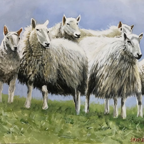 (CreativeWork) SMALL FLOCK OF CHEVIOTS  by LOUISE GROVE WIECHERS. Acrylic Paint. Shop online at Bluethumb.