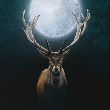 (CreativeWork) Catch the Moon by Bec Bartell. Acrylic. Shop online at Bluethumb.