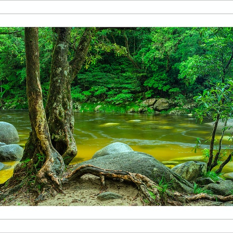 (CreativeWork) Mossman Gorge Ed. 11 of 100 by Nick Psomiadis. Photograph. Shop online at Bluethumb.