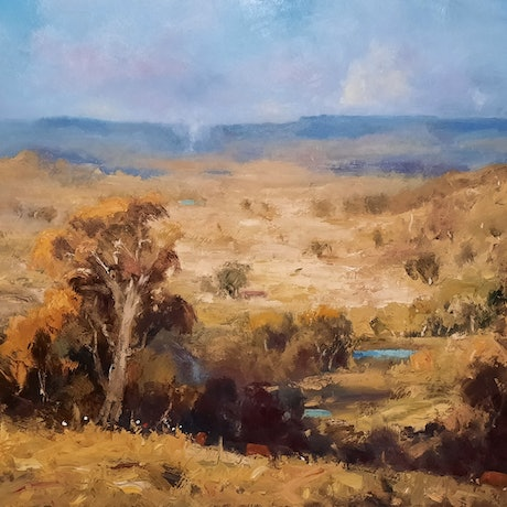 (CreativeWork) Golden Summer. Kilcoy. Qld by Barry Back. Oil Paint. Shop online at Bluethumb.