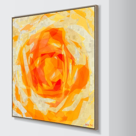 (CreativeWork) Peach Rose- Framed Limited Edition Print - 130cm squ Ed. 1 of 25 by George Hall. Print. Shop online at Bluethumb.