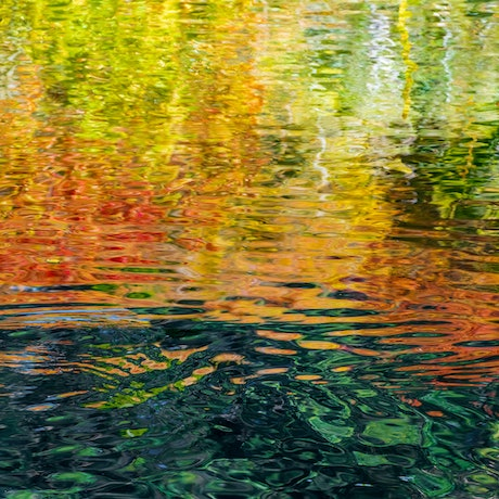 (CreativeWork) Motherr Nature Is The Perfect  Artist Ed. 1 of 10 by Wayne Pearson. Photograph. Shop online at Bluethumb.