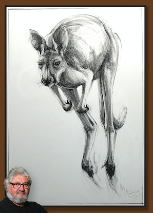(CreativeWork) Portrait of Kangaroo No. 55 by Michael Chorney. Drawing. Shop online at Bluethumb.