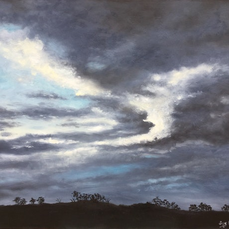 Storm clouds  after dark over low  horizon and mallee trees