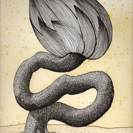 (CreativeWork) The long-winded one Ed. 1 of 25 by Patricia Van Lubeck. Print. Shop online at Bluethumb.