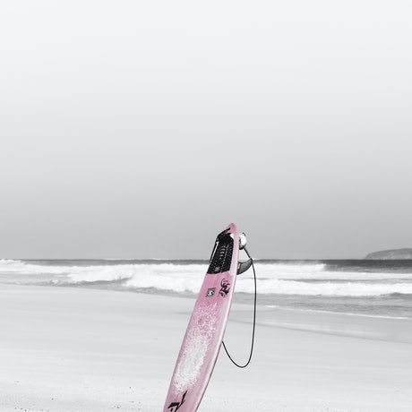 (CreativeWork) A pink surfboard today Ed. 1 of 5 by Wendy Philip. Photograph. Shop online at Bluethumb.
