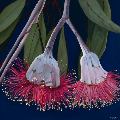 (CreativeWork) Crimson Beauty print on canvas  Ed. 41 of 100 by Hayley Kruger. Print. Shop online at Bluethumb.