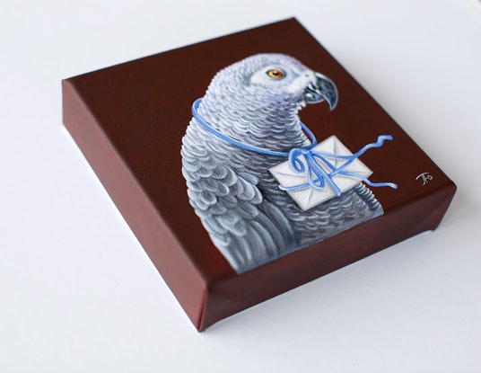 Grey parrot with love letter