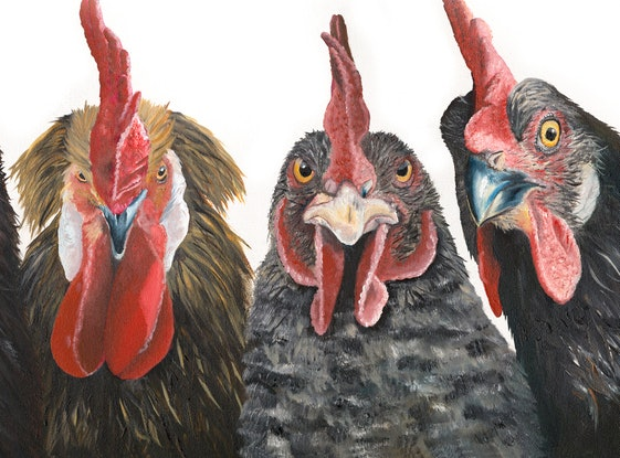 (CreativeWork) Gatecrasher at the Hens Party  by Johanna Larkin. Oil. Shop online at Bluethumb.