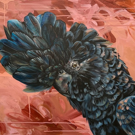 """(CreativeWork) """"Theodore"""" The Red Tailed Cockatoo by HEYLIE MORRIS. Acrylic Paint. Shop online at Bluethumb."""
