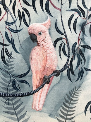 (CreativeWork) Pink Cockatoos - The Prettiest Vandals Ed. 9 of 50 by Sally Browne. Print. Shop online at Bluethumb.