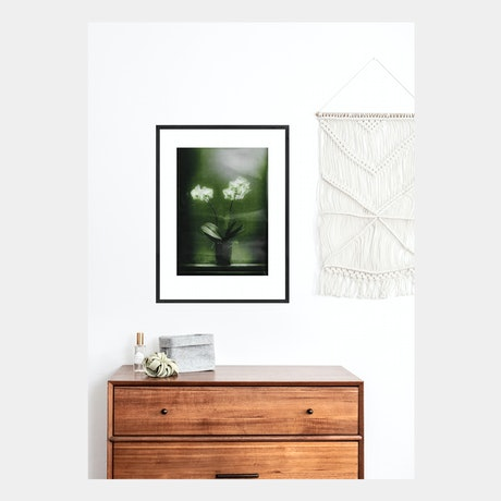 (CreativeWork) Ester's Orchid (Green) FRAMED Ed. 1 of 1 by Mat Hughes. Photograph. Shop online at Bluethumb.