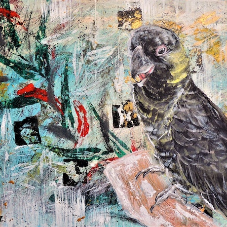 (CreativeWork) Yellow Tailed Black Cockatoo - Good Food, Good Mood! by HSIN LIN. Acrylic Paint. Shop online at Bluethumb.